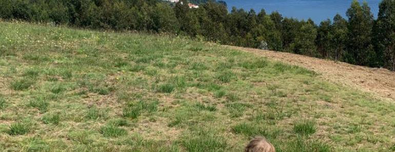 Alojamiento con niños en Asturias: Llano de Con