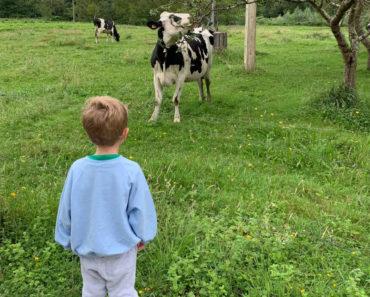 Viaje con niños a Asturias: 10 planes en familia fuera de lo más típico y masificado